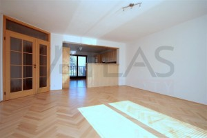 Living room with view of kitchen - For Rent: 4-bedroom Family House, Nebusice, near ISP