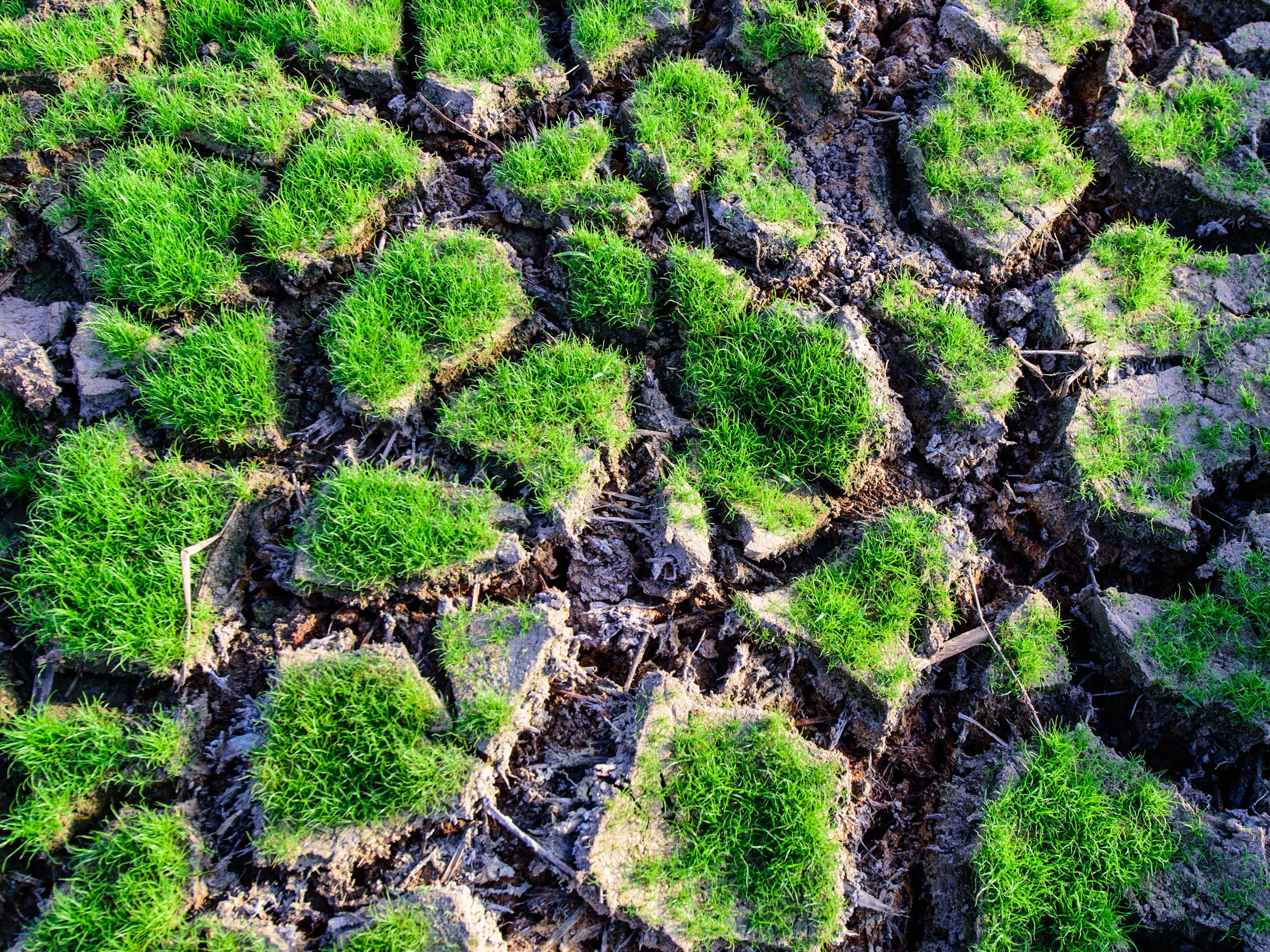 Odpad a změna klimatu