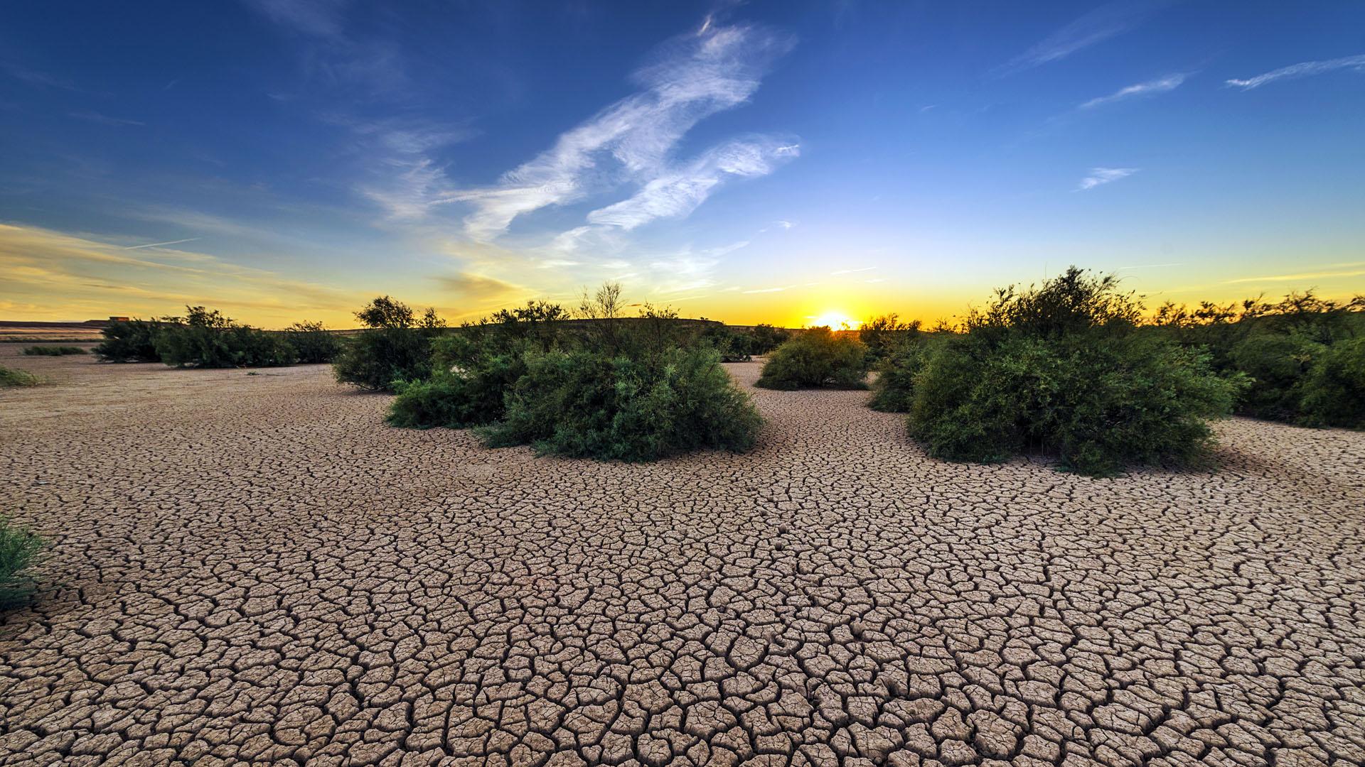 Globální partnerství pro ochranu a přizpůsobení se změně klimatu