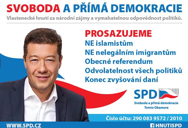 Přímá demokracie a její instituce v České republice